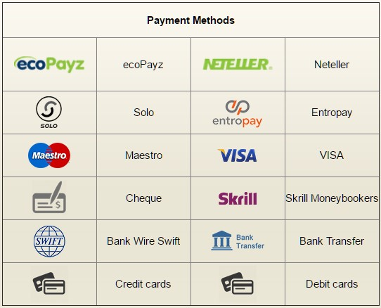 Royal Vegas Payment Methods